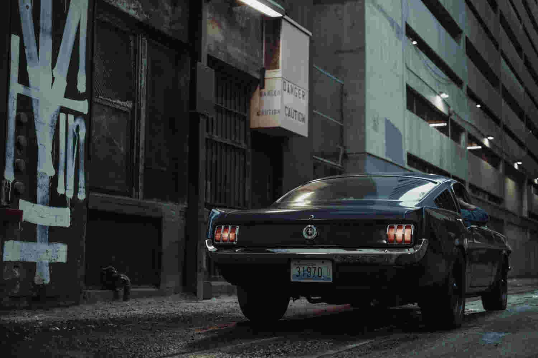 Deanbradshaw Gothamii 7