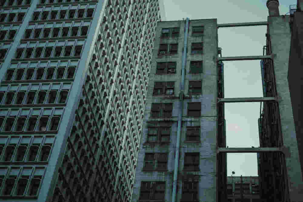 Deanbradshaw Gothamii 10