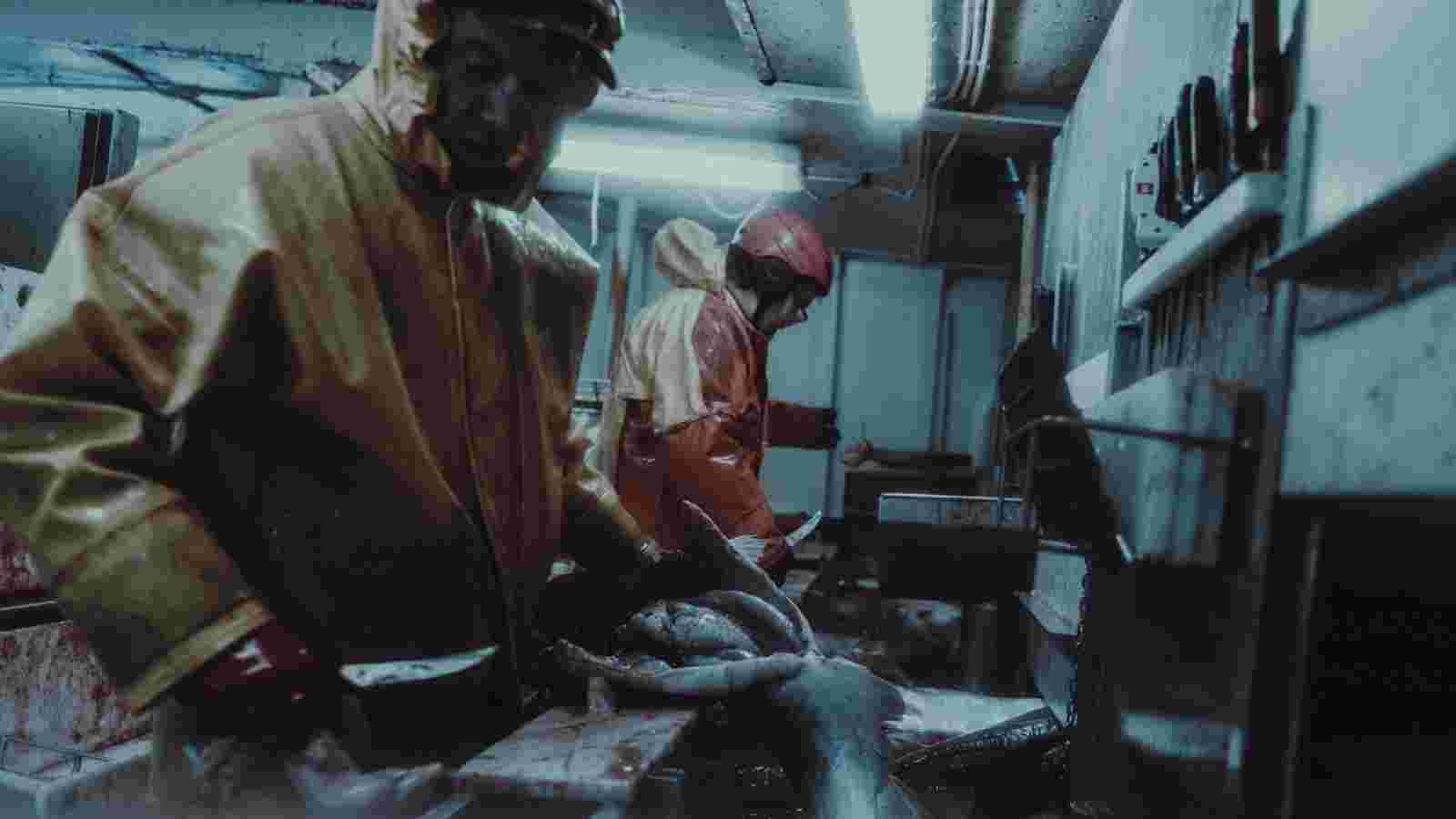 Deanbradshaw Fishermen Iceland 25