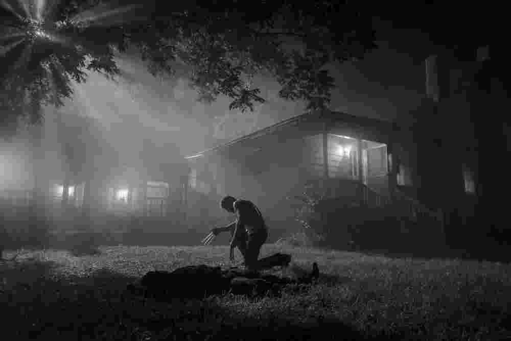 Wolverine Farmhouse Deanbradshaw 3931