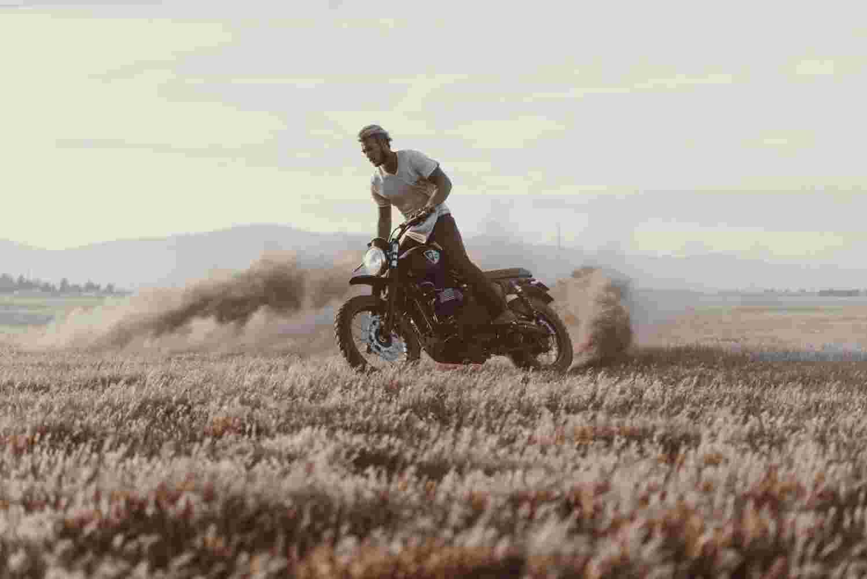 Deanbradshaw Triumph 3